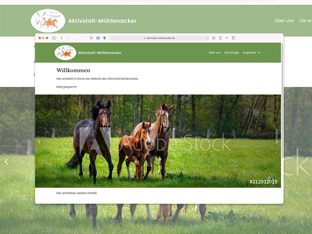 Website der Fahrschule Gericke